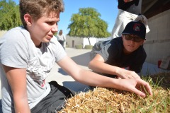 During gardening class, Nathan Frye, 8, and Zach Kinion, 8, pull weeds from straw bales. (Photo by SeAnna Brennan)