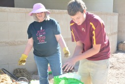 Laying the fertilizer down in Mrs. Dolle's garden, William Botos, 8, helps plant broccoli.